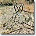 Figaro - Vie des Hommes de la préhsitoire - Art préhistorique - Hominidés