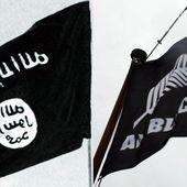 Bandiera All Blacks confusa con Isis, arrivano i carabinieri