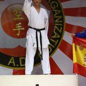 """Jisei Karate Dô """" Blog Archive """" Record absolu pour Pascal Vigneron en 2015 !"""