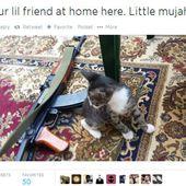 La surprenante communication de l'État islamique sur les réseaux sociaux