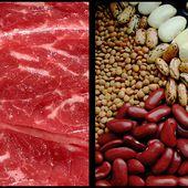 Comment remplacer la viande de nos assiettes?