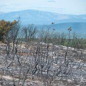 Un incendiaire présumé arrêté à Manosque