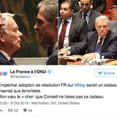 ONU : la Russie met son veto à la proposition de la France pour un cessez-le-feu à Alep, par AFP