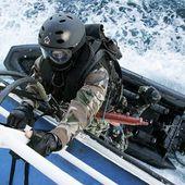 Piraterie maritime. La protection privée des navires autorisée