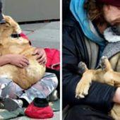23 photos qui prouvent que votre chien se fout totalement de combien vous gagnez !