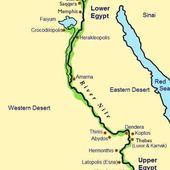14th Dynasty