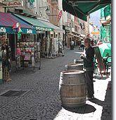 Barcelonnette - Alpes de Haute Provence - Provence Web