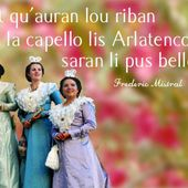 Reine d'Arles - Accueil