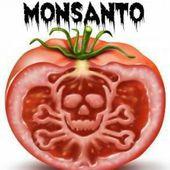 """L'histoire complète de Monsanto, """"La société la plus maléfique au monde"""" - Santé Nutrition"""