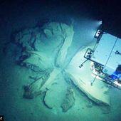 """Misteriosas """"flores gigantes"""" en el fondo del océano desconcertaron a los científicos (Fotos y vídeo) -- Sott.net"""