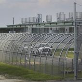 Federal agents in Texas move hospitalized El Salvador woman awaiting emergency surgery to a detention facility
