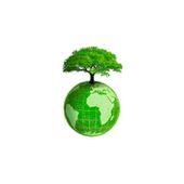 Pannelli solari sui tetti obbligatori in una regione dell'India