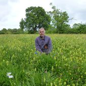 Great Dixter and Yellow Rattle