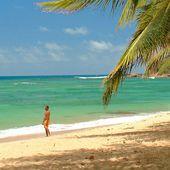 Hotel Martinique | Zilea Hotel et location en Martinique