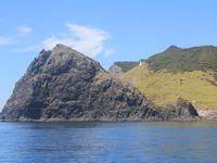 Album - NZ-bay-of-islands