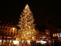 le grand sapin de Noël a Strasbourg