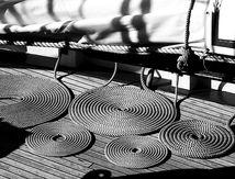 Les cordes