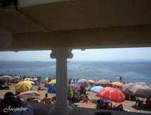 Les Algérois et la mer