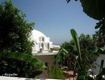Le mausolée de Sidi Abderrahmane