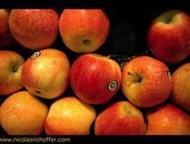 """""""Mangez des pommes"""" qu'y disait"""