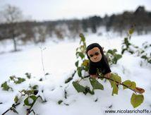 Un singe à la neige