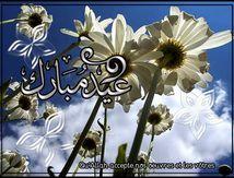 Les fêtes en Islam : des moments de gaieté, de bien et de piété