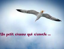 """Délicieux poème: """"Un petit oiseau qui s'envole ..."""""""