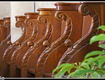 St Saturnin (puy de dôme) - la beauté du bois