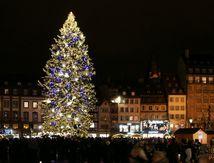 Le Sapin de Strasbourg 2011