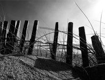"""Nouvelle galerie photos """"Dunes et Plages Atlantique"""" en vente sur Jingoo - Posters papier, aluminium, plexiglas, sur toile"""