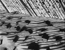 Dunes atlantique