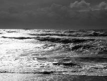 Petites vagues de novembre