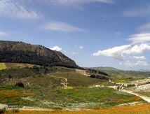 Les Grecs en Sicile