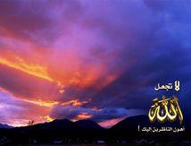 "[Vidéo] "" Jamais ne réussira un peuple qui ne connaît [Allah] que pendant le ramadan ! """