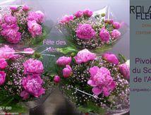 Fleuriste Narbonne