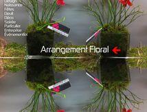 Une fleuriste dans la cité historique et touristique de Narbonne