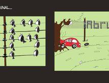 Brève volante : message subliminal...
