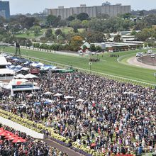 """""""Michelle Payne makes Melbourne Cup history as..."""