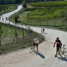 """""""A classic cycle ride in #Italy's Chianti country""""..."""