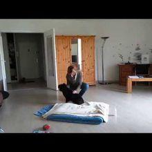 Vidéo de massage canin, avec Roméo, 16 ans