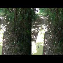 Divers - Vapeur à Barnac 2014 - Les Vidéos