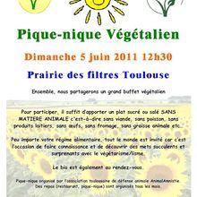 Pique nique végétalien à Toulouse le 5 juin 2011
