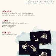Stage Léo Tamaki, 24 au 30 juillet Paris
