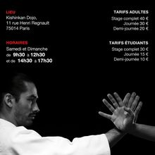 Stage Léo Tamaki à Paris, 2 et 3 avril, Kishinkan dojo