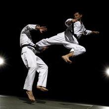 Keri waza, les techniques de jambes