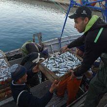 Du côté des pêcheurs