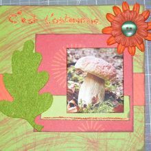 Swap journal d'automne.... ma page