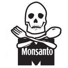 Algunas de las mentiras de Monsanto sobre los cultivos transgénicos