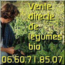 Local - Var - vente de fruits & légumes bio - zone Tourves-Brignoles-St Maximin