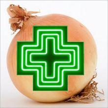 Que contient l'OIGNON ? Les bienfaits de l'oignon - Analyse chimique et pharmacologique.